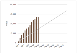nanowrimo_day12